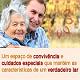 CIAI - Visite o Website da CIAI