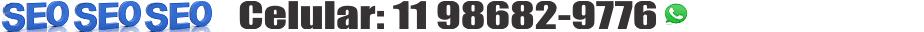 11 98682.9776-Otimização de Sites TOP20